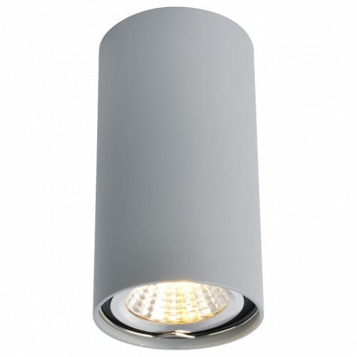 A1516PL-1GY Потолочный светильник Arte Lamp
