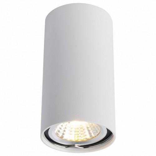 A1516PL-1WH Потолочный светильник Arte Lamp