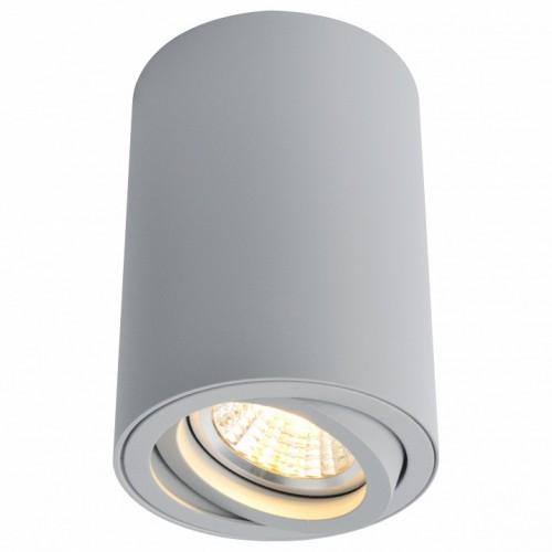 A1560PL-1GY Потолочный светильник Arte Lamp