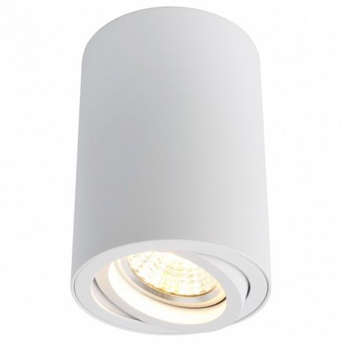 A1560PL-1WH Потолочный светильник Arte Lamp