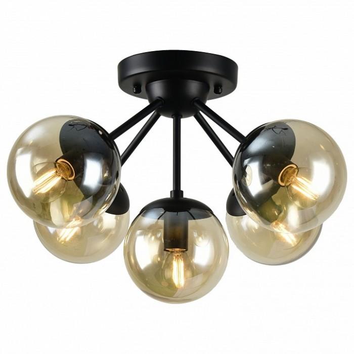 1Светильник A1664PL-5BK Arte Lamp