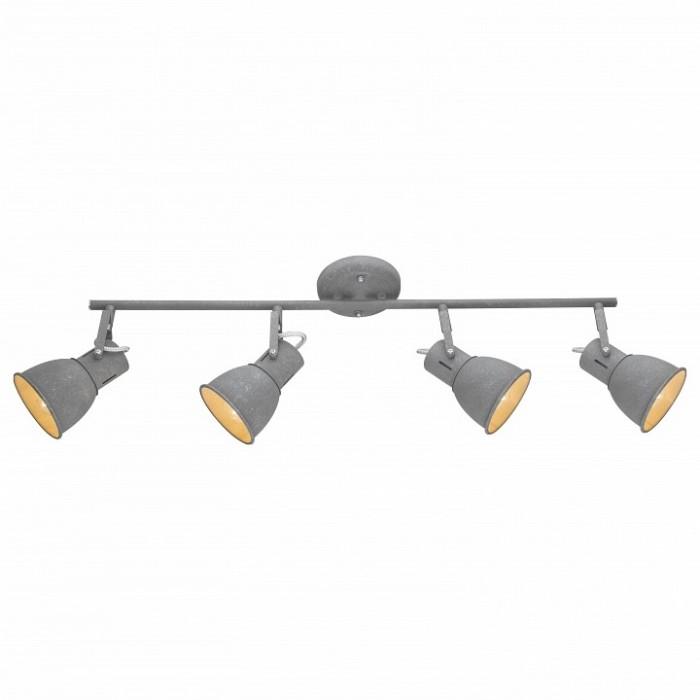 1Потолочный спот A1677PL-4GY ARTE LAMP