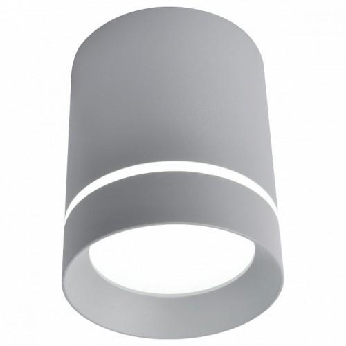 A1909PL-1GY ARTE LAMP Накладной светильник