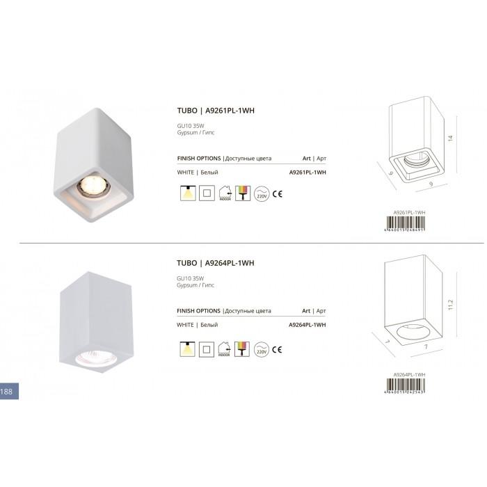 2A9261Pl-1WH ARTE LAMP Светильник накладной гипсовый