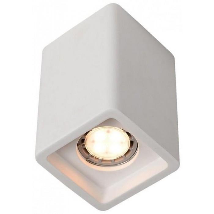 1A9261Pl-1WH ARTE LAMP Светильник накладной гипсовый