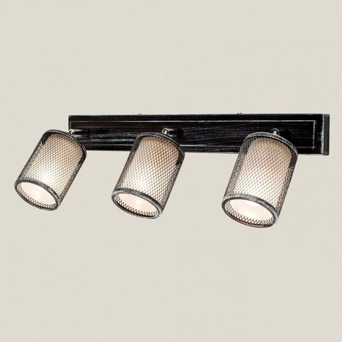 1Потолочный светильник Citilux CL535531