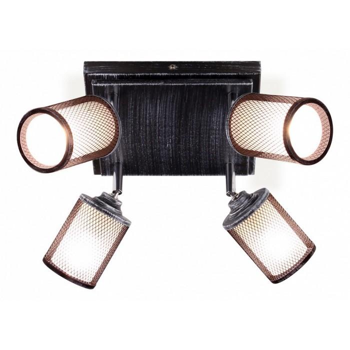 2Потолочный светильник Citilux CL535541