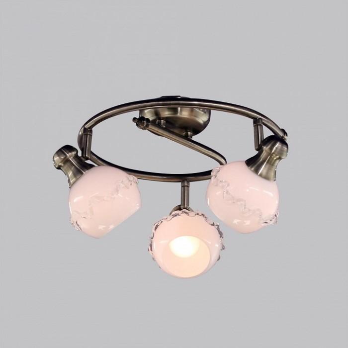 2Потолочный светильник Citilux CL540531