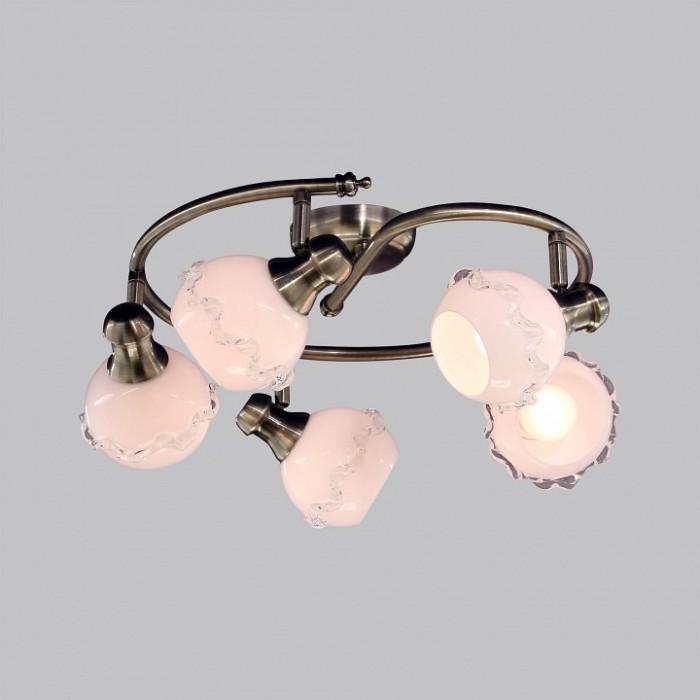2Потолочный светильник Citilux CL540551