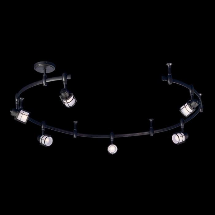 2Трековый светильник Citilux CL563161