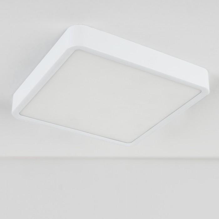 2Накладной потолочный светильник DLS034 24W 4200K Elektrostandart