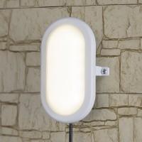 LTB0102D 22 см 12W пылевлагозащищенный светодиодный светильник Электростандарт