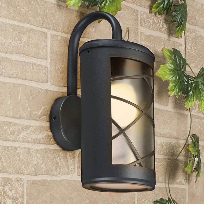 1Настенный уличный светильник Premier D Электростандарт