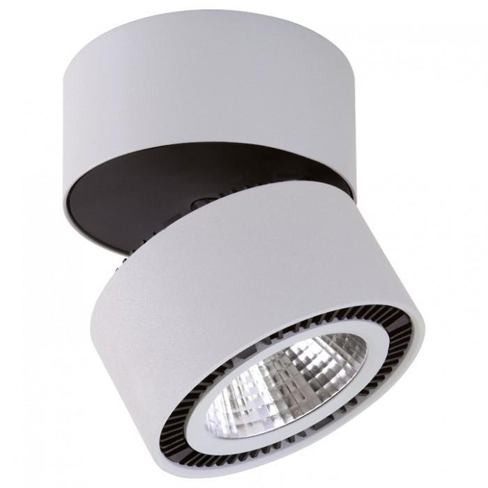 1Светильник 213830 Lightstar