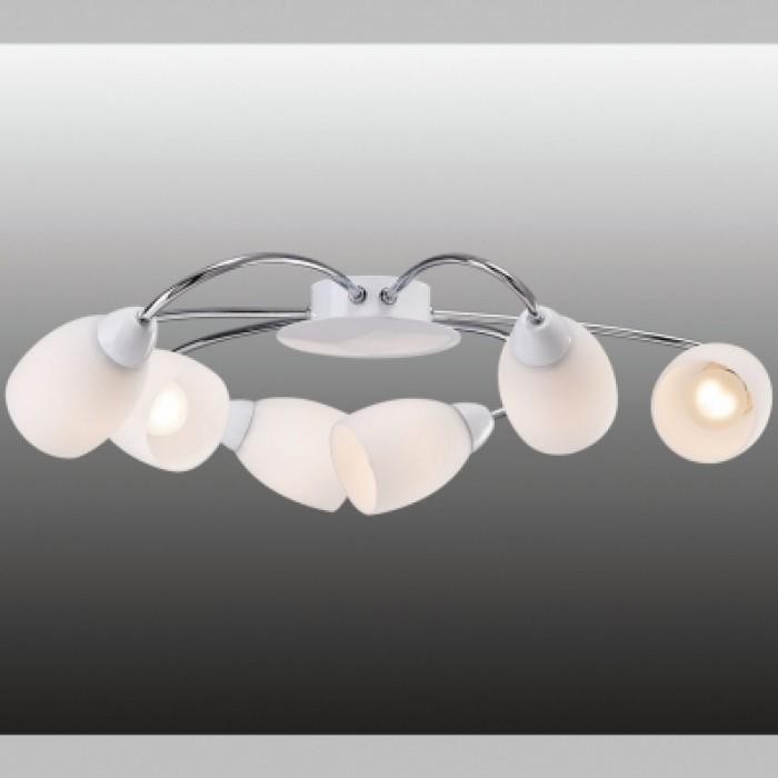 1Потолочный светильник Favourite 1042-6U Blanca