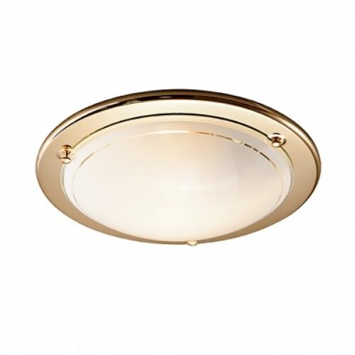 215 Настенно-потолочный светильник Сонекс