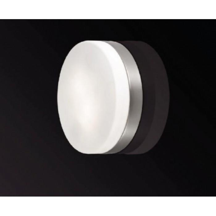 1Светильник для ванной потолочный 2405/2C Odeon Light
