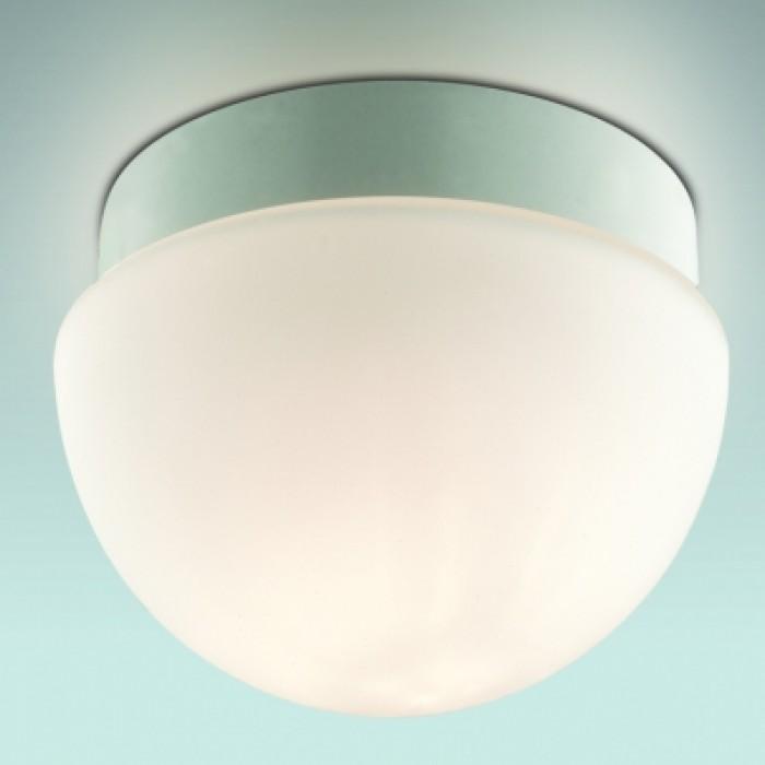 1Светильник для ванной потолочный 2443/1B Odeon Light