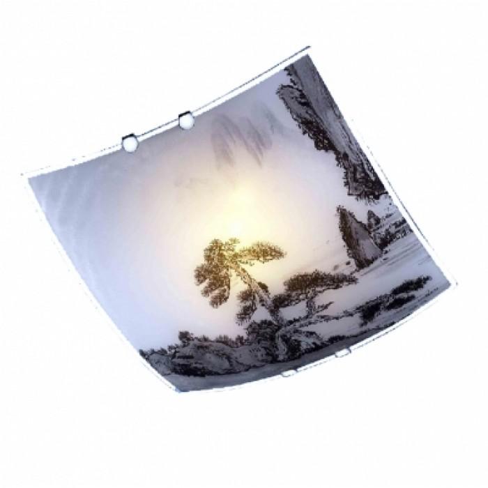 1Настенно-потолочный светильник 2504-21 квадратной формы