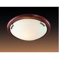 260 Настенно-потолочный светильник Сонекс