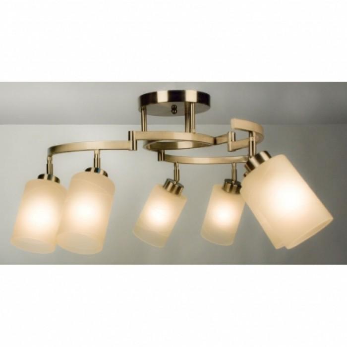 1Потолочный светильник CL125161 Citilux