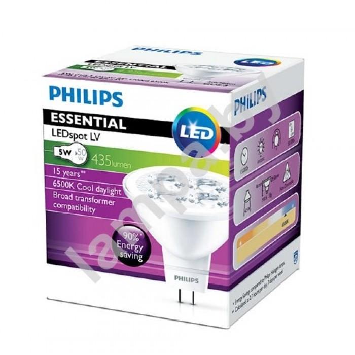1Светодиодные лампы Essential LED 5-50W 6500K MR16 24D