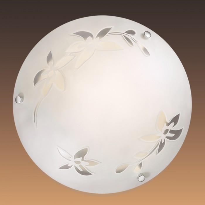 21214 Настенно-потолочный светильник Сонекс