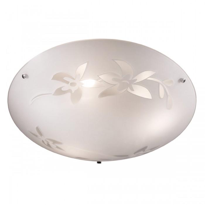 11214 Настенно-потолочный светильник Сонекс