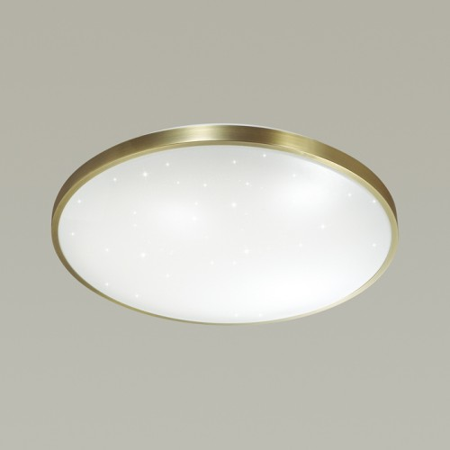 2089/EL Светодиодный светильник Сонекс
