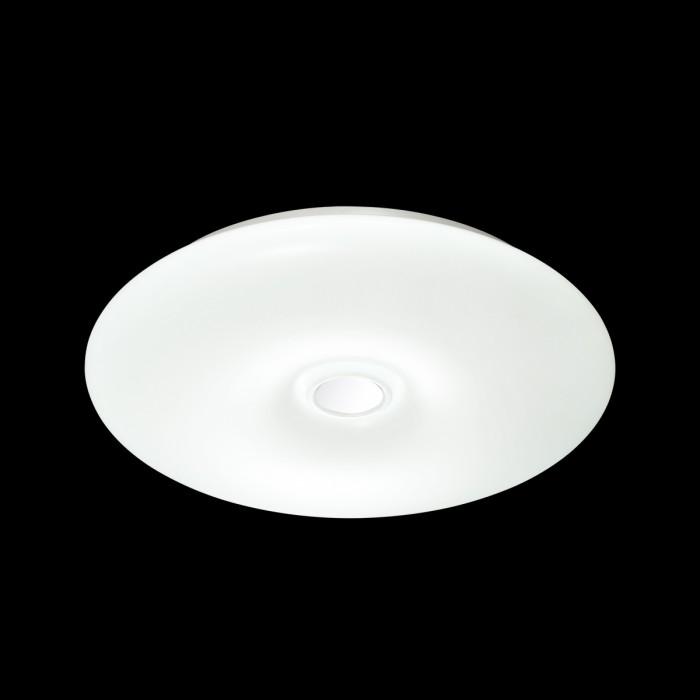 1Светильник с пультом 3021/EL Сонекс