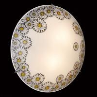 3215 Настенно-потолочный светильник Сонекс