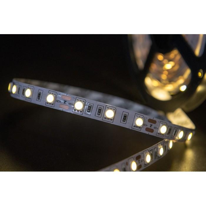 2Лента светодиодная эконом 5050, 60 LED/м, 14,4 Вт/м, 12В, IP20, Цвет: Теплый белый