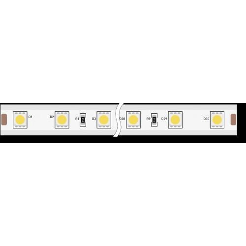 Лента светодиодная 220, SMD5050, 60LED/м, кат 50м, 14,4 Вт/м, IP68, Синий (Синий)
