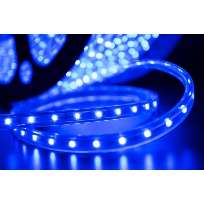 2Лента светодиодная 220, SMD3528, 60LED/м, кат 100м, 4,8 Вт/м, IP68, Синий