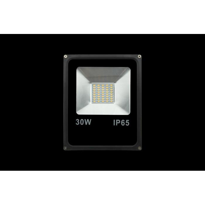 1Прожектор светодиодный 5630 6500К Холодный белыйK FL-SMD-30-CW