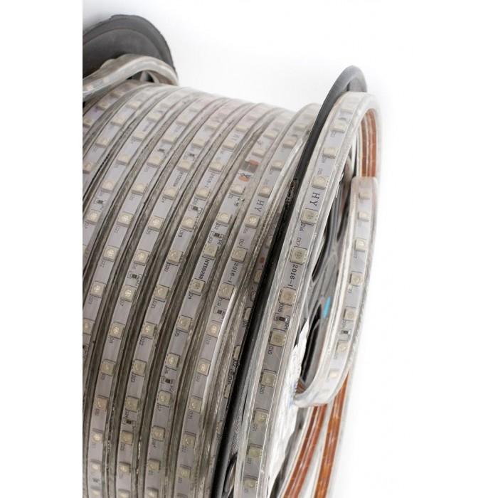 2Лента светодиодная 220, SMD5050, 60LED/м, кат 50м, 14,4 Вт/м, IP68, Синий (Синий)