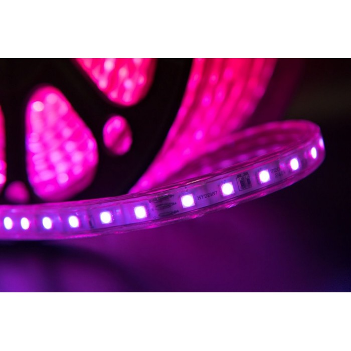 2Лента светодиодная 220, SMD5050, 60LED/м, кат 50м, 14,4 Вт/м, IP68, RGB (RGB)
