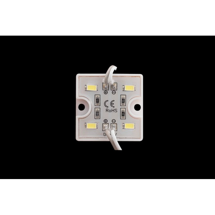 2Модуль светодиодый SWG, 4LED, 1Вт, 12В, IP65, Цвет: 6000-6500 К Холодный белый, провод 9см