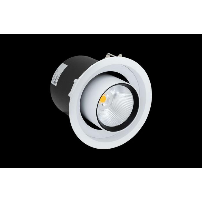 2Светильник светодиодный потолочный встраиваемый поворотно-выдвижной, серия SPL, матовый белый + черный, 25Вт, IP20, Теплый белый (3000К)