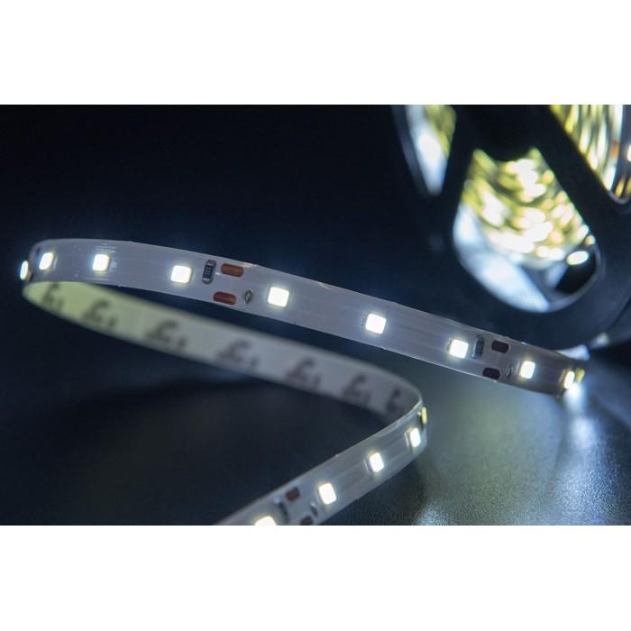 2Лента светодиодная эконом 2835, 60 LED/м, 4,8 Вт/м, 12В, IP20, Цвет: Холодный белый