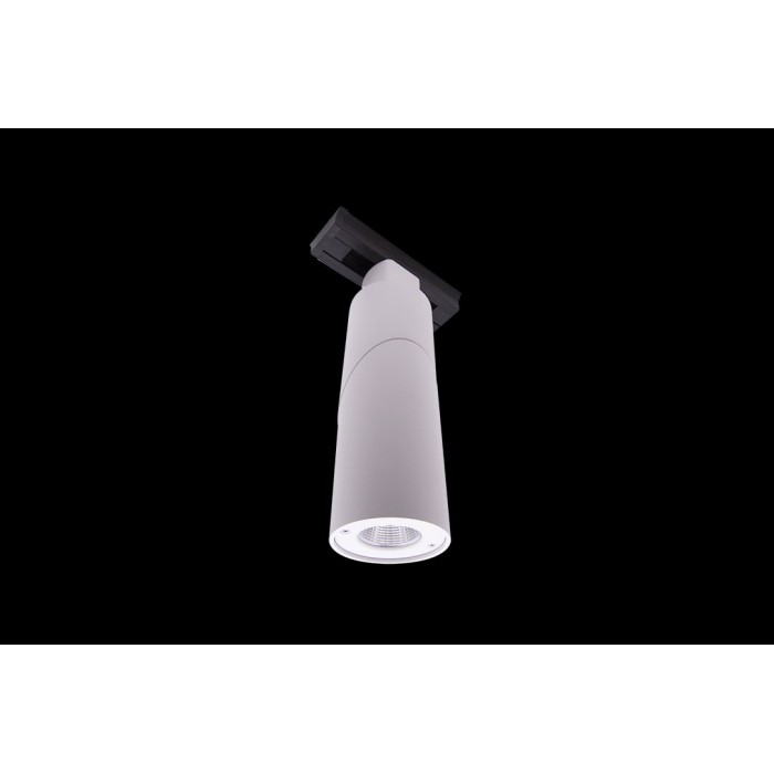1Трековый LED светильник круглый белый 10Вт 3000К LDT-RWT-10W-WW (LD-3025)