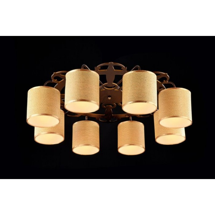 1Потолочный светильник Timone FR5100-CL-08-BR
