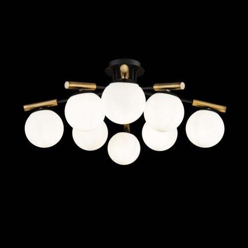Потолочный светильник Paolina FR5011CL-08B