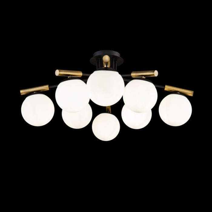 1Потолочный светильник Paolina FR5011CL-08B