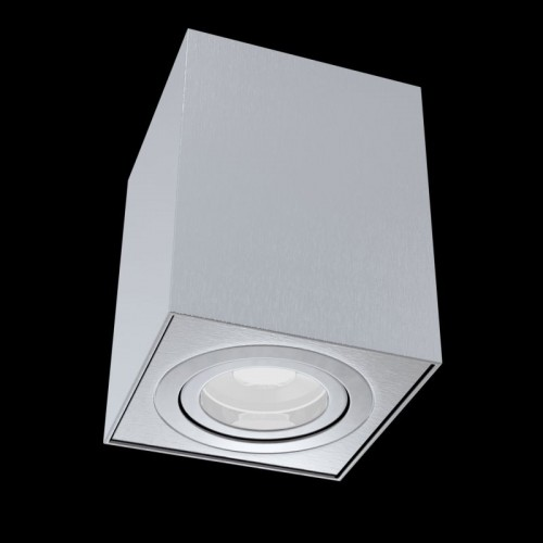 C017CL-01S Потолочный светильник Alfa Maytoni