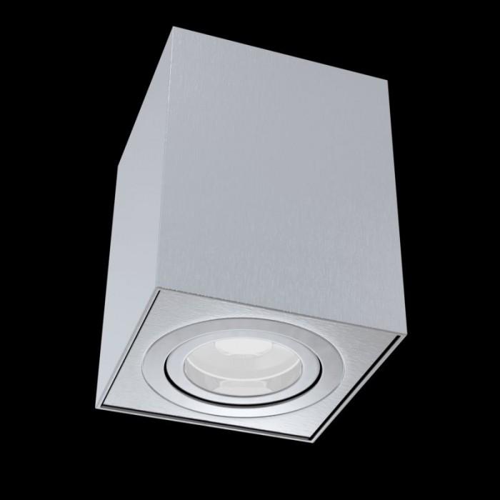 1Потолочный светильник Alfa C017CL-01S