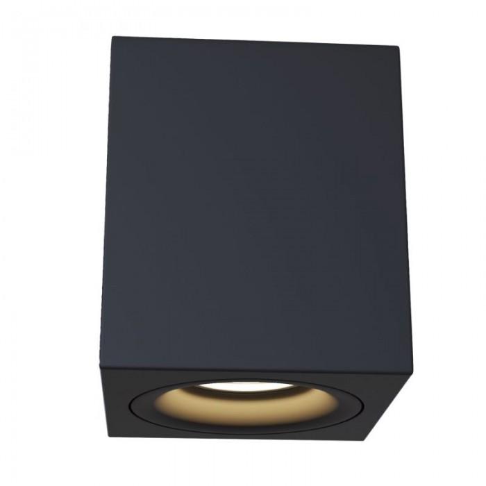 1Потолочный светильник Alfa C013CL-01B