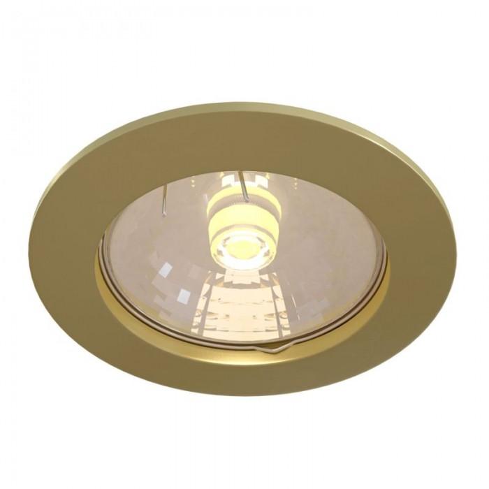 2Встраиваемый светильник Metal Modern DL009-2-01-G