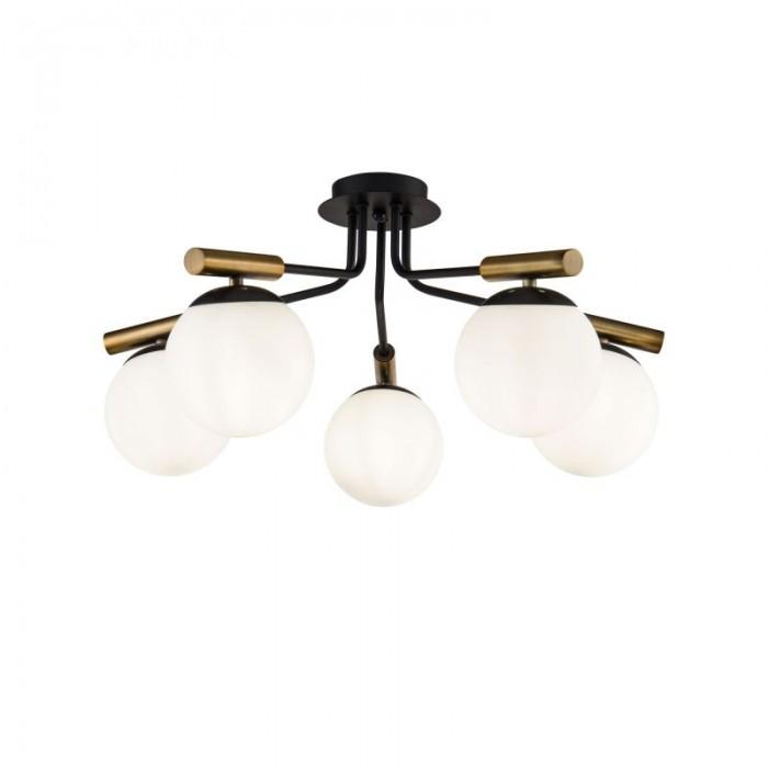 2Потолочный светильник Paolina FR5011CL-05B