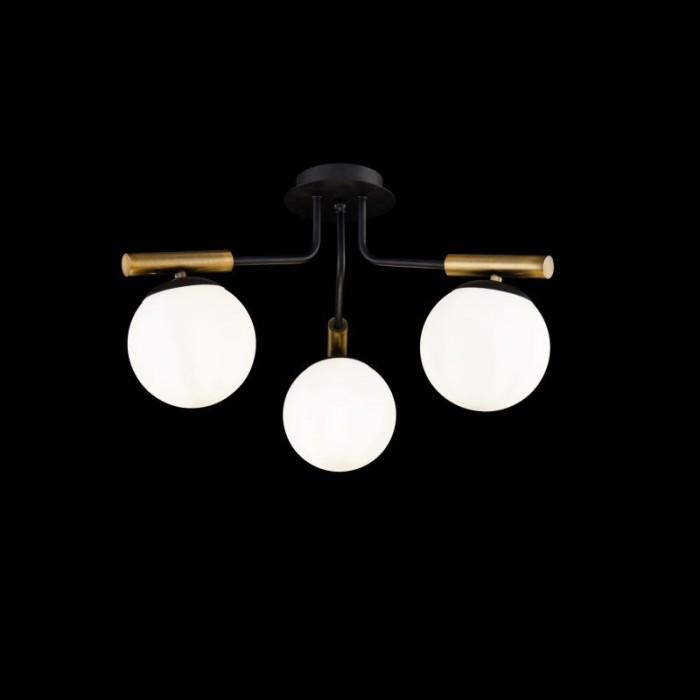 1Потолочный светильник Paolina FR5011CL-03B